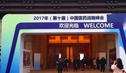 2017中国医药战略峰会